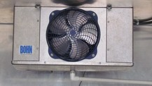 High speed 110 fan